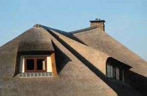 Strakke belijning riet rond dakkapellen