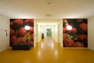 De vierde verdieping van de Fruittoren