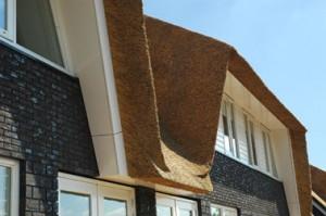 Een van wit multiplex voorzien kader omgeeft de uitsparing van de dakkapel in het rieten oppervlak