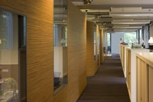 Flexplekken en afscheidingen door middel van werkcocons en kasten en geen verlaagde plafonds om zoveel mogelijk hoogte te houden