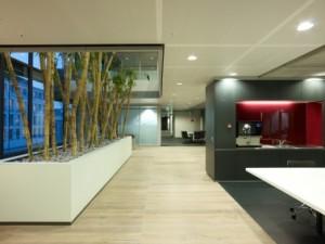 In de bestaande kantoorvloeren zijn plaatselijk vides met binnentuinen uitgespaard