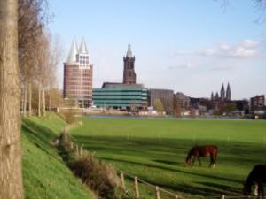 Het aanzicht van de stad vanaf de Maasdelta uit het westen