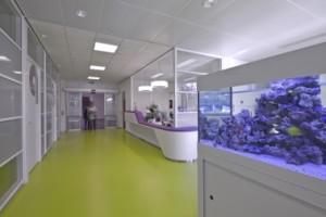 7 De ontvangst- en wachtruimte van de orthopedie- en revalidatietechniek met links paskamers en rechts aquarium