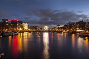 Big Tree van Jacques Rival - Amsterdam Light Festival 2013 / Foto van Janus van den Eijnden