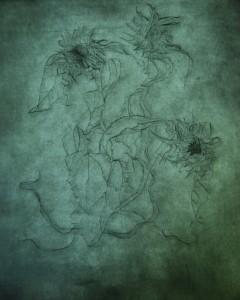 De tekening van Jan-Koen Lomans