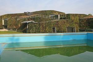 Net na de opening van het zwembad, de gevels zijn rondom voorzien van pril groen.