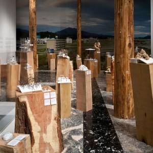 Toyo Ito maakte voor Japan een installatie met woonhuizen voor slachtoffers van de tsunami van 2010, gepresenteerd op lange houten palen. Foto: Francesco Galli