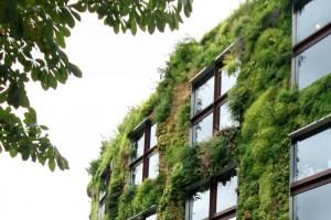 Een imposante, stedelijke klimaatbuffer in Europa is de mur végétal van het door Jean Nouvel ontworpen Musée du quai Branly in Parijs. Foto: Jenny Phoria