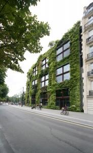 Een imposante, stedelijke klimaatbuffer in Europa is de mur végétal van het door Jean Nouvel ontworpen Musée du quai Branly in Parijs. De groene wand is 200 meter lang en 12 meter hoog. Foto: Jenny Phoria