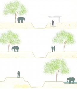 Het pad rond de olifant niche laat bezoekers de dieren op verschillende manieren benaderen, zo dicht mogelijk erbij zonder hun leven te verstoren.