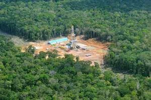 Oliewingebied in Amazone: kaalslag in het oerwoud