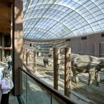Olifantenverblijf Zoo Kopenhagen
