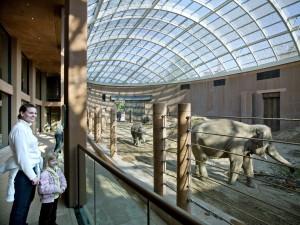 Olifantenverblijf Zoo Kopenhagen, ontwerp Foster + Partners • Foto Richard Davies.