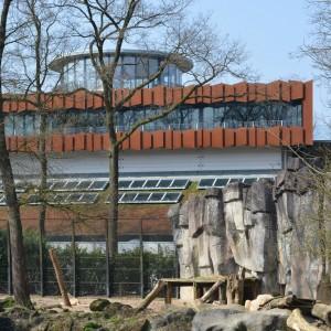 Gorillaverblijf Ouwehands Dierenpark, Rhenen, ontwerp Solo architectuur