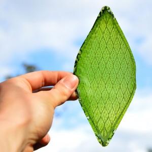 Silk Leaf, een synthetisch zijde dat CO2 omzet in zuurstof; dit materiaal leent zich ook voor toepassing in gevels.