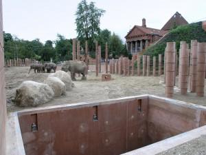 Kopenhagen-Zoo-oude-en-nieuwe-olifantenverblijf. Foto Jacqueline Knudsen