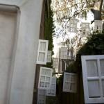 Verbotrgen Stegen in Vlaardingen en Schiedam