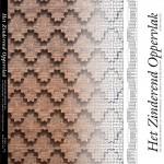 Cover boek Het Zinderend oppervlak