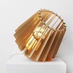 Kickstarter campagne voor lamp FRED