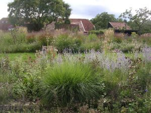 Tuin Piet Oudolf in Hummelo