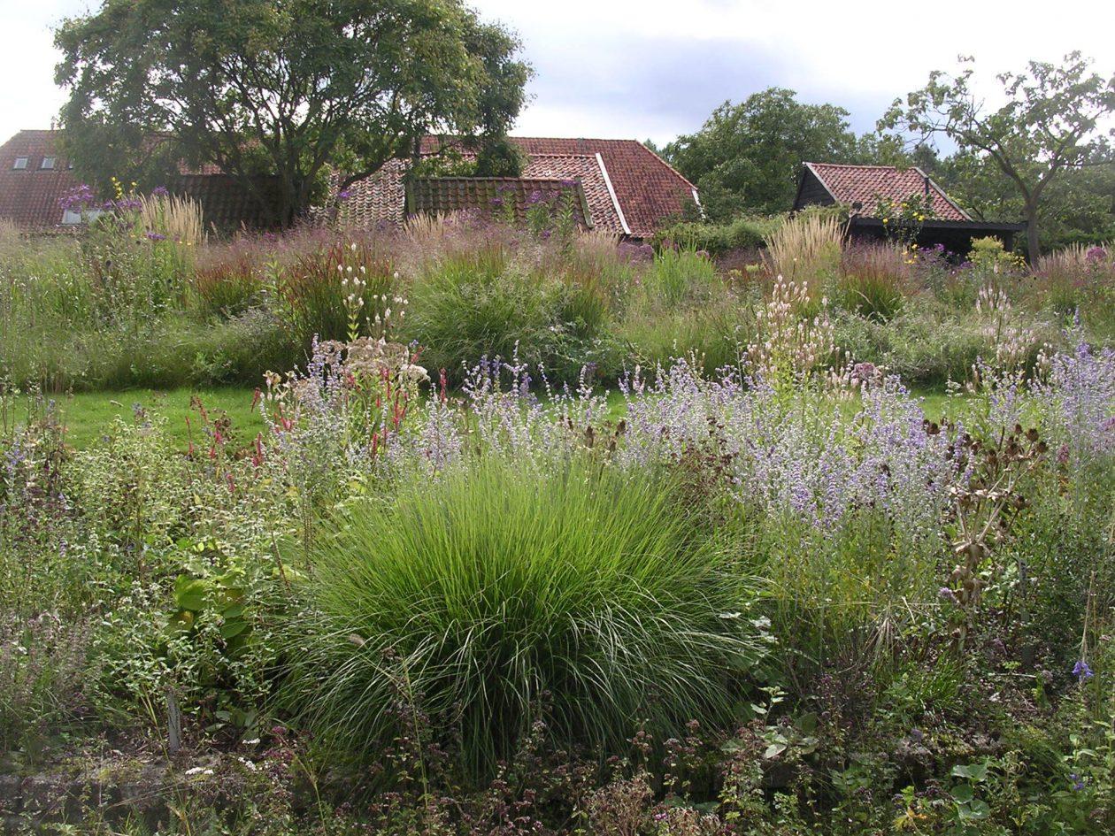 Paradijs van piet oudolf for Piet oudolf pflanzplan
