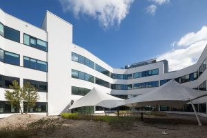 Sijthoff Building, Den Haag, transformatie gebouw door V8architects, aanleg daktuin door Flora Nova • Foto Bart van Hoek