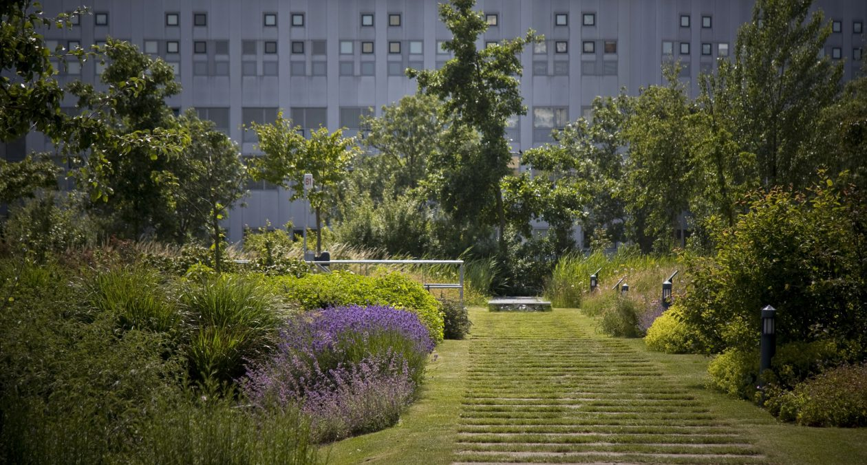 Daktuinen zijn technische tuinen   architectuur.nl
