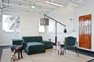 Tom Frencken & Studio Stelt