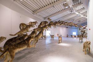 Kunstwerk Head on van Cai Guo Qiang tijdens de openingsexpositie La fine del mondo. De tentoonstellingsruimte is op vele manieren indeelbaar en door de wisselende diepte en lichtinval zijn meerdere sferen te creëren.