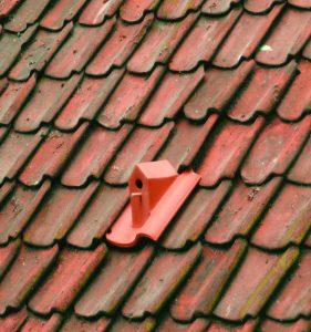 Birdhouse: een dakpanvogelhuisje dat precies tussen elk type dakpan schuift. Het ziet er poëtisch en vrij eenvoudig uit, maar is uiterst ingewikkeld om te maken. Het huisje wordt gemaakt op drie achtereenvolgende locaties.