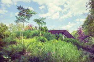 Dutch Mountain Woning : Ondergronds huis dutch mountain te koop in kunstgalerie