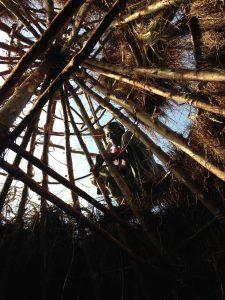 Lokale dakdekker legt riet tijdens de bouw van een testwoning in 2014 in Mount Elgon Kenia.