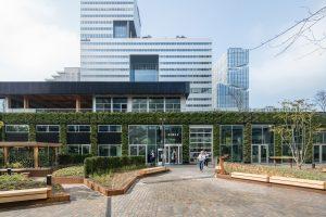 Het gebied tussen het ABN AMRO kantoor en paviljoen Circl kreeg een groene inrichting.  Foto Ossip van Duivenbode