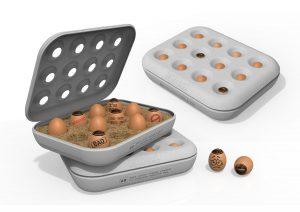 Honest Egg van Jailani-Bin-Ismail