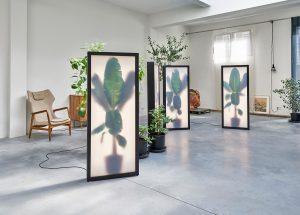 Growing PLants Rem Atelier