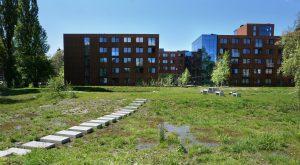 Waterpark en ISH Delft. Foto Jacqueline Knudsen