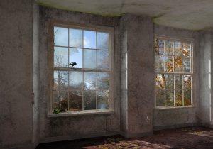Tweede Natuur, expositie in Kasteel Groeneveld Baarn 2017 i.s.m. Milad Pallesh en Sylvia Hendriks; Kasteel Groeneveld na 10 jaar
