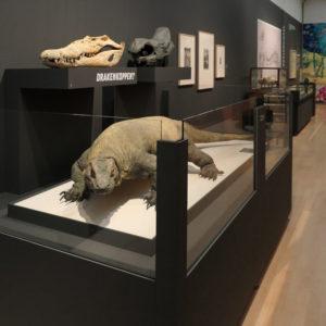 Teylers Museum expositie 'Monsterdieren, echt of niet' 2018