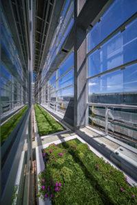 EPO Rijswijk_Hangende plantenbakken tussen de dubbele glasgevels aan de zuidoostzijde. Foto John Lewis Marshall