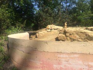 Prairiehondenverblijf - Thijs de Zeeuw