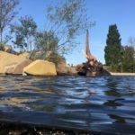 Thijd de Zeeuw landschapsarchitect dierenverblijf artis