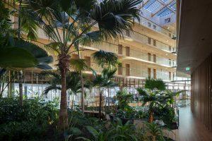 De tuin in Hotel Jakarta sluit aan op de tuinen op het Java Eiland in Amsterdam. De subtropische tuin in het atrium is aangelegd met medewerking van de Hortus Botanicus Amsterdam