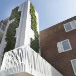 plantenwand-aan-gevel-appartentengebouw-Kolpingbuurt-Nijmegen