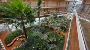 binnentuin Hotel Jakarta