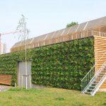 groene daken en gevels