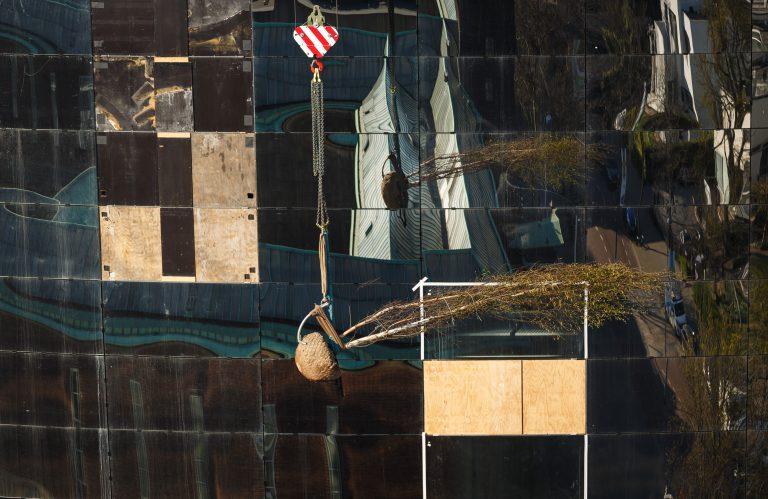 omen op daktuin Depot Boijmans van Beuningen