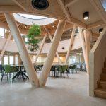Webinar: Bouwen met hout, hoe doe je dat?
