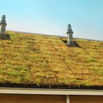 Kennis en inzicht groenblauwe daken