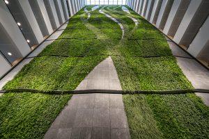 Atrium met plantenwand van ruim 60 bij 21 meter in het European Medicines Agency Amsterdam. Foto's: Rob Acket
