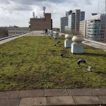 Onderzoek impact groene daken